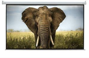 #2.Homegear HD 110-Inch Motorized Projector Screen