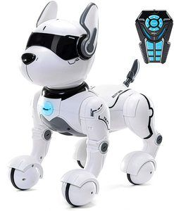 #1. Top Race Store RC Robot Dog Toy