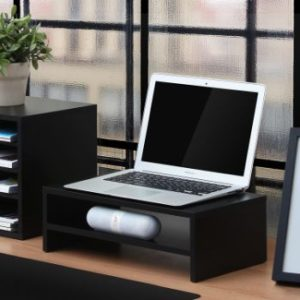 4. FITUEYES Computer Monitor Stand